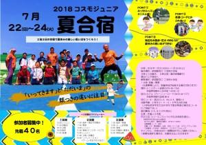 2018コスモジュニア夏合宿チラシ-001
